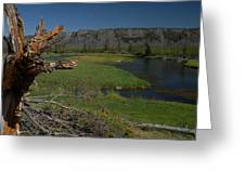 Hiking The Rivers Of Yellowstone Greeting Card by Larry Moloney