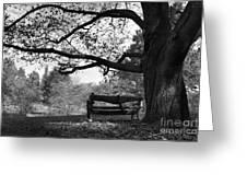 Hillsdale College Slayton Arboretum Greeting Card by University Icons