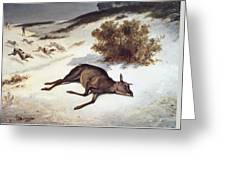 Hind Forced Down In The Snow Greeting Card by Gustave Courbet