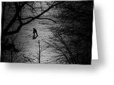 Hockey Silhouette Greeting Card by Andrew Fare