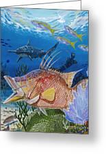 Hog Fish Spear Greeting Card by Carey Chen