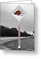 Hog Sign Greeting Card by Scott Pellegrin