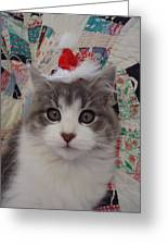 Holiday Kitten Greeting Card by Leslie Manley