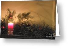 Holly And Light Greeting Card by Traci Law