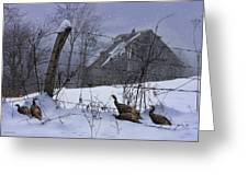 Home Through The Snow Greeting Card by Ron Jones