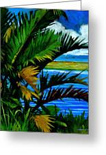 Ho'omaluhia 1 Greeting Card by Douglas Simonson