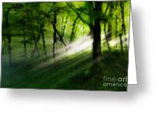 Hope Lights Eternal - A Tranquil Moments Landscape Greeting Card by Dan Carmichael