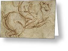 Horse And Cavalier Greeting Card by Leonardo da Vinci