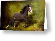 Horse Angel Greeting Card by Dorota Kudyba