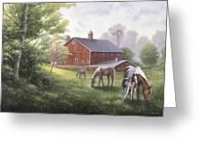 Horse Barn Greeting Card by John Zaccheo