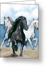 Horse Beach Greeting Card by Eric Smith