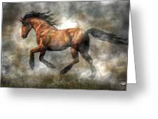 Horse Greeting Card by Daniel Eskridge