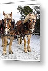 Horse Drawn Sleigh Greeting Card by Edward Fielding