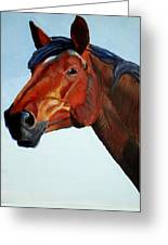 Horse Head Greeting Card by Mike Jory