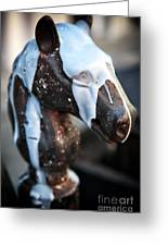 Horse Head Pole Greeting Card by John Rizzuto