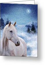 Horse In Winter Greeting Card by Kenny Francis