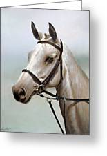 Horse Portrait I Greeting Card by John Silver