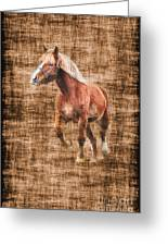 Horse Running Greeting Card by Dan Friend