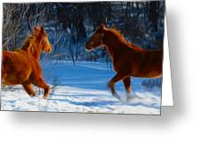 Horses At Play Greeting Card by Tracy Winter
