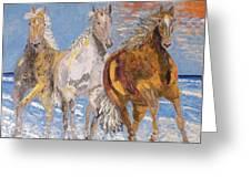 Horses on the Beach Greeting Card by Vicky Tarcau