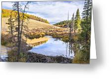 Horsethief Creek Beaver Pond - Cripple Creek Colorado Greeting Card by Brian Harig