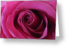 Hot Pink II Greeting Card by Anna Villarreal Garbis