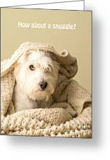 How About A Snuggle Card Greeting Card by Edward Fielding