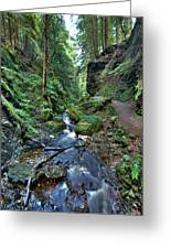 How Green Is My Glen Greeting Card by Gary Eason