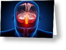 Human Brain Greeting Card by Johan Swanepoel