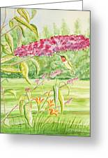 Hummer At Butterfly Bush Greeting Card by Kathryn Duncan