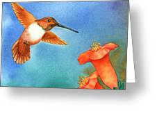 Hummer Greeting Card by Tracy L Teeter