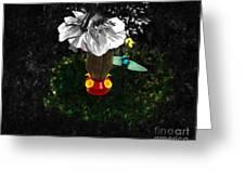 Hummingbird In The Spotlight Greeting Card by Al Bourassa