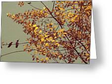 Hummingbirds On Yellow Tree Greeting Card by Ben and Raisa Gertsberg