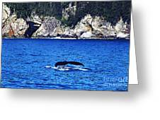 Humpback Whale Alaska Greeting Card by Thomas R Fletcher