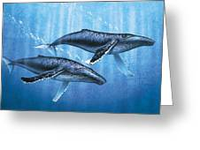 Humpback Whales Greeting Card by JQ Licensing