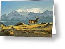 Hunter's Dream - Elk Greeting Card by Paul Krapf