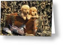 Hunting Buddies - Fs000130 Greeting Card by Daniel Dempster