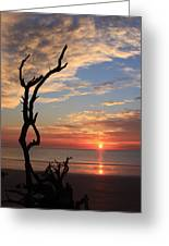 Hunting Island Sunrise Greeting Card by Michael Weeks