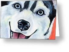 Husky Greeting Card by Melissa Smith