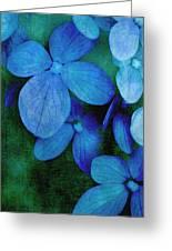 Hydrangea Blues Greeting Card by Christine Annas