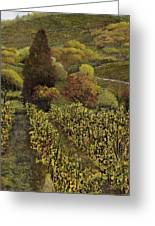 I Filari In Autunno Greeting Card by Guido Borelli