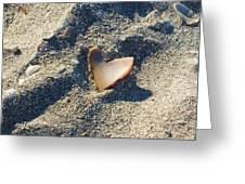 I Heart the Beach Greeting Card by Anna Villarreal Garbis