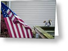 I Pledge Allegiance Greeting Card by Brian Wallace