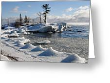 Ice Cold Greeting Card by Sandra Updyke