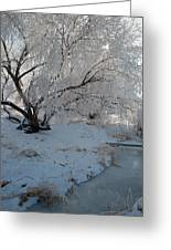 Ice Covered Tree And Creek In Montana Greeting Card by Bruce Gourley