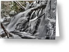 Ice On A Stick Greeting Card by Dan Friend