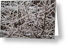 Ice Storm Greeting Card by Arlene Carmel