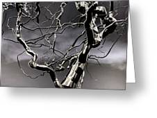 Ice Veins in the Sky Greeting Card by Joenne Hartley