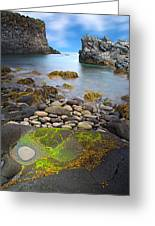 Iceland Rocky Coast Landscape Greeting Card by Dirk Ercken