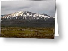Icelandic Landscaope Greeting Card by Louise Fahy